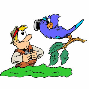 Image result for watching birds clip art