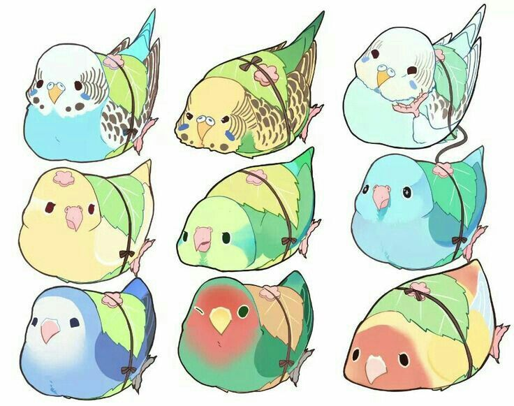 Parrot clipart chibi. Pin by leilani davenberry