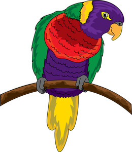 Free image best of. Parrot clipart colourful parrot vector black and white library