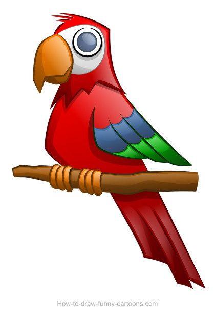 Parrot clipart shadow. Drawing sketching vector pinterest