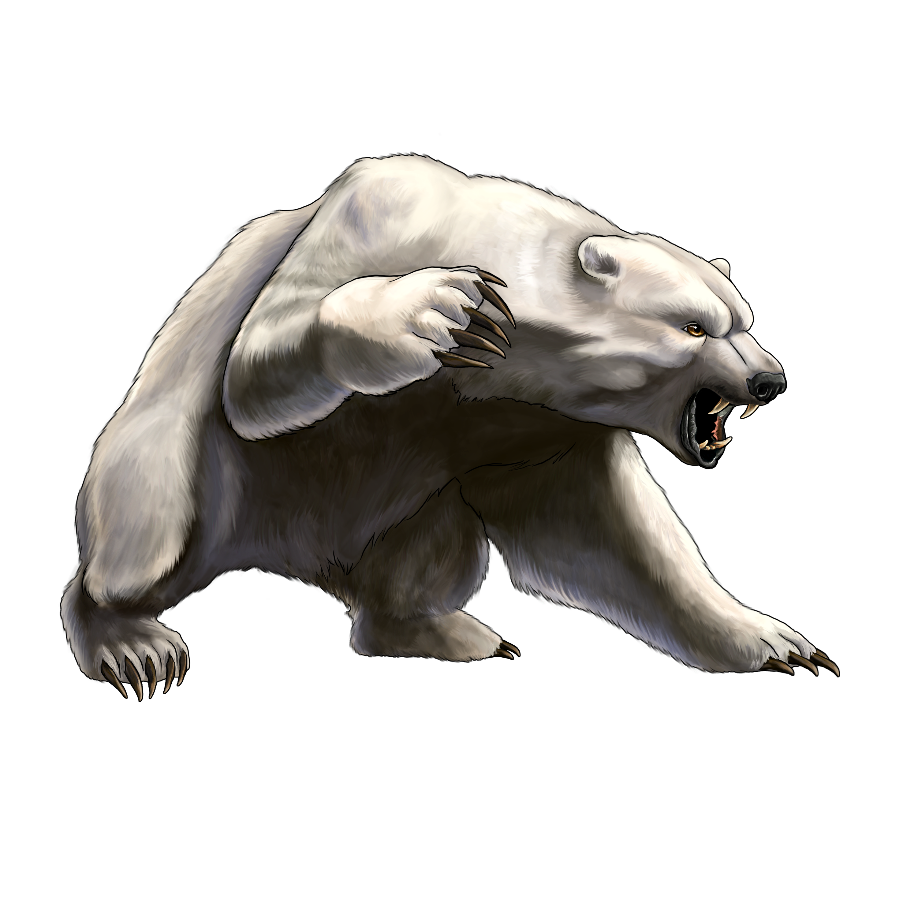 Grizzly drawing bear roar. Crazy a character design