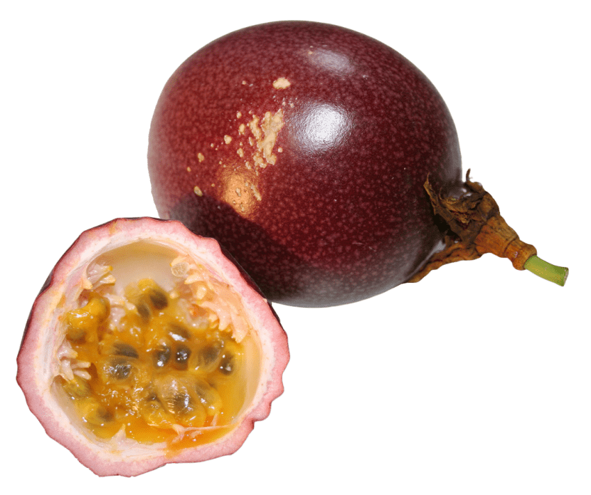 Passion fruit png. Free images toppng transparent
