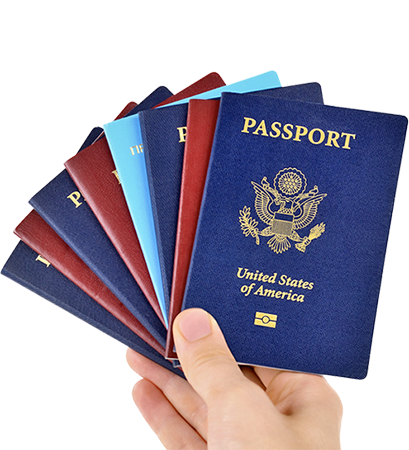 Passport photo png. Images free download