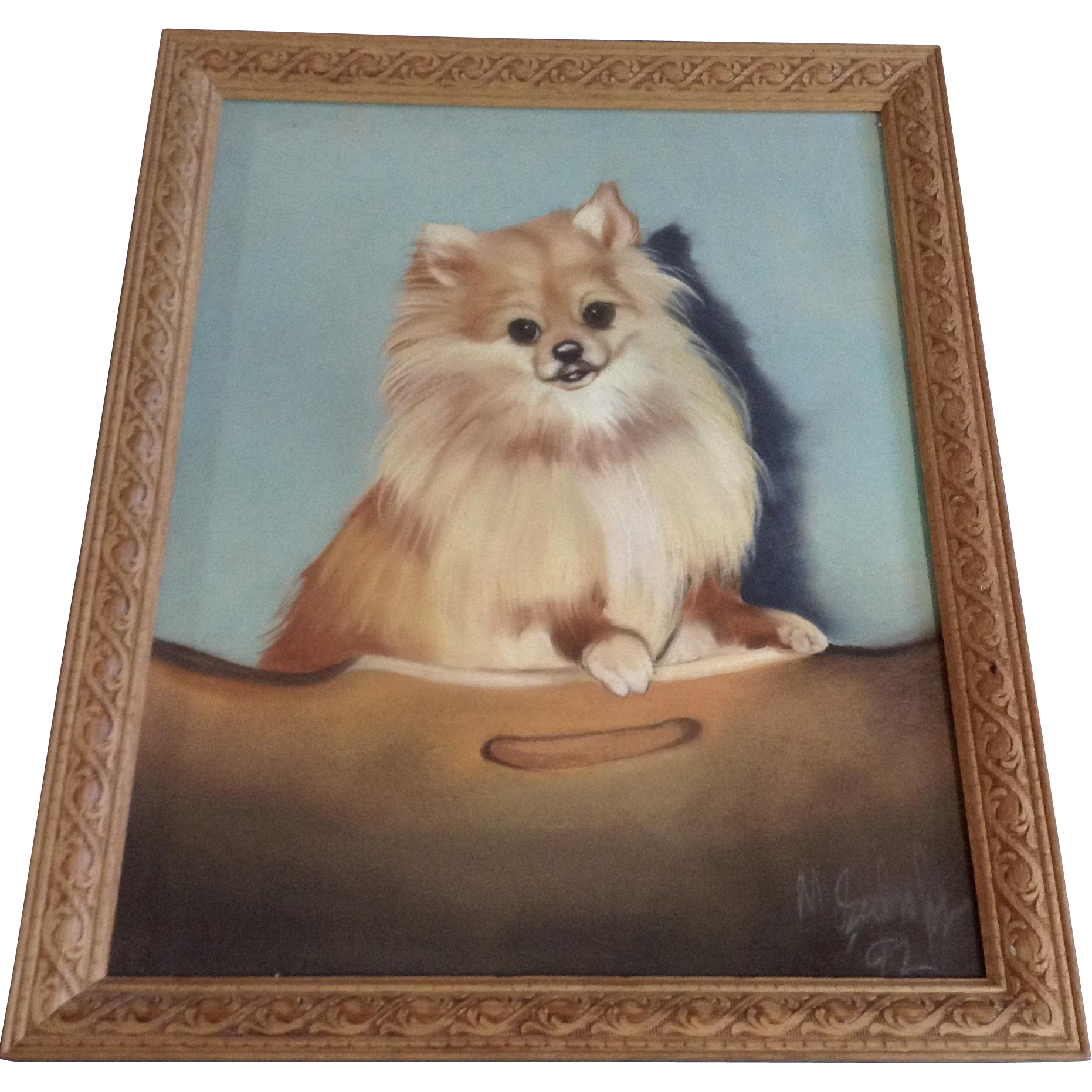 Pastels drawing hyper realistic. Pomeranian puppy dog portrait