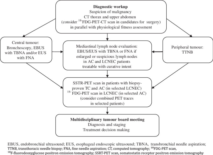 Schematic illustrating a suggested. Pathway drawing svg library library