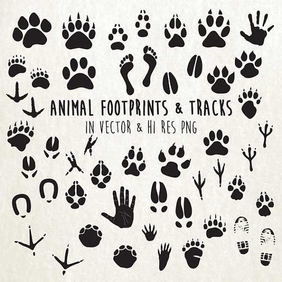 Print clipart tracks png. Paw clip art animal clip art library download
