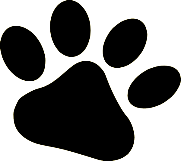 transparent paw jaguar
