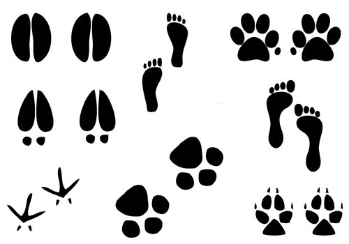 Pin by tessymol jose. Paw clip art silhouette clipart royalty free library