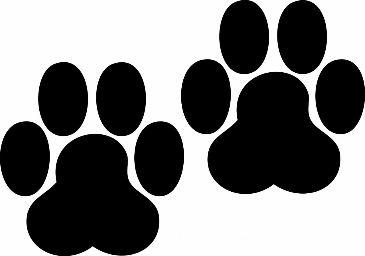 Dog print at getdrawings. Paw clip art silhouette png free