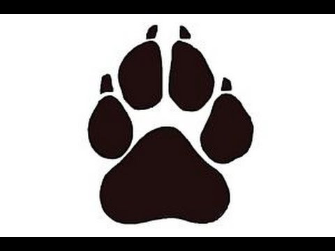 Paw clipart easy. How to draw a