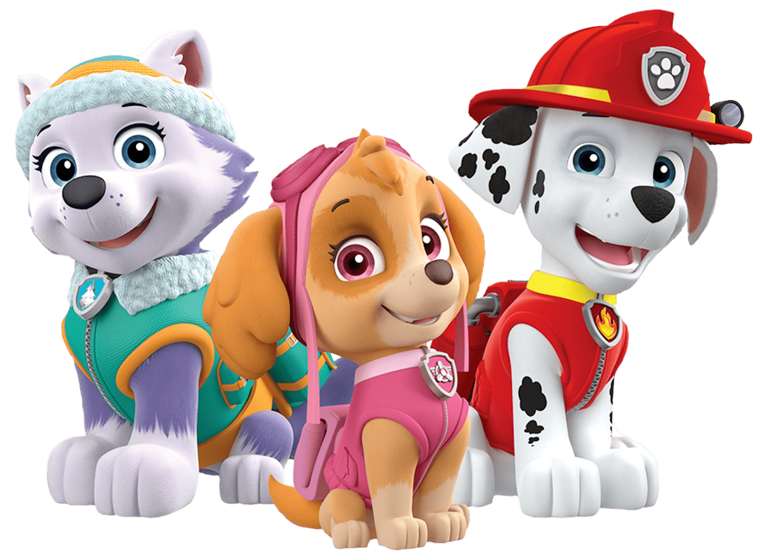 Paw patrol everest png. Marshall skye clipart