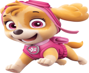 Skye paw patrol png. Clipart free images is