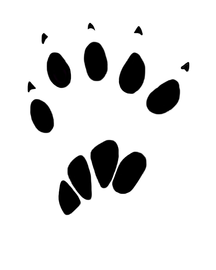 Paw tracks png. Prints clipart animal