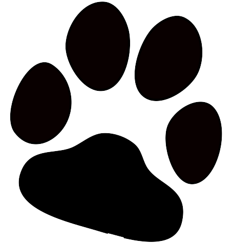 Pawprint clipart real dog. Paw print transparent png