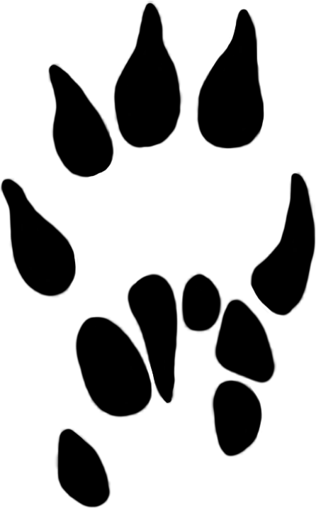 Pawprint clipart svg. Download hd paw prints