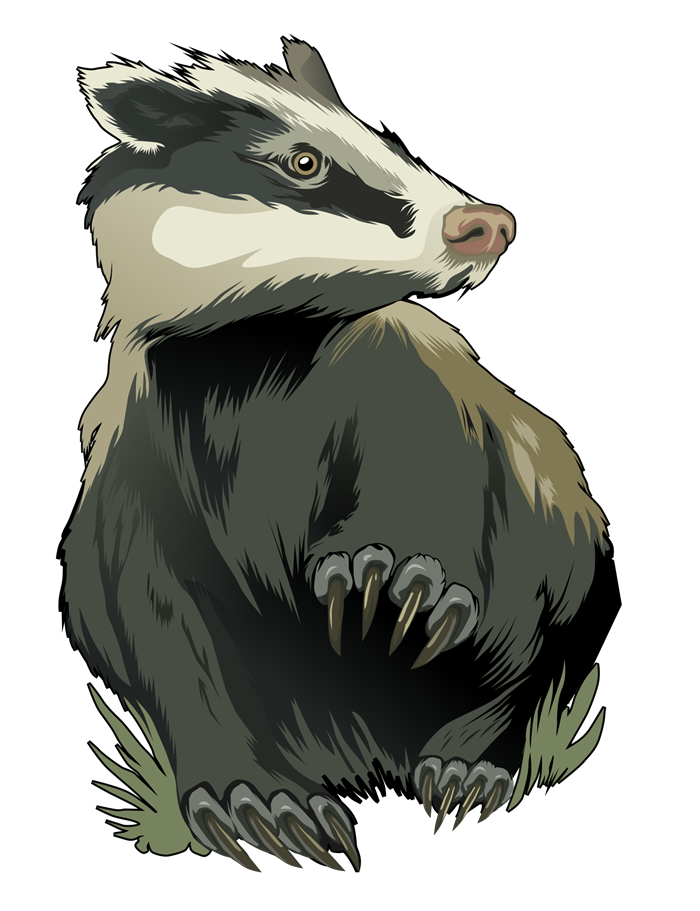 Paws clipart badger. Free cliparts download clip