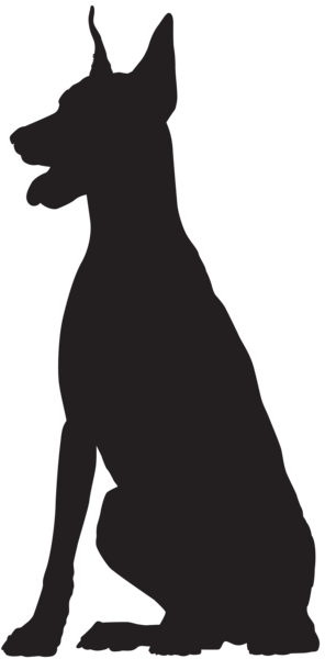 Doberman vector outline