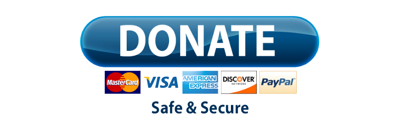 Paypal donate button png. Transparent mart