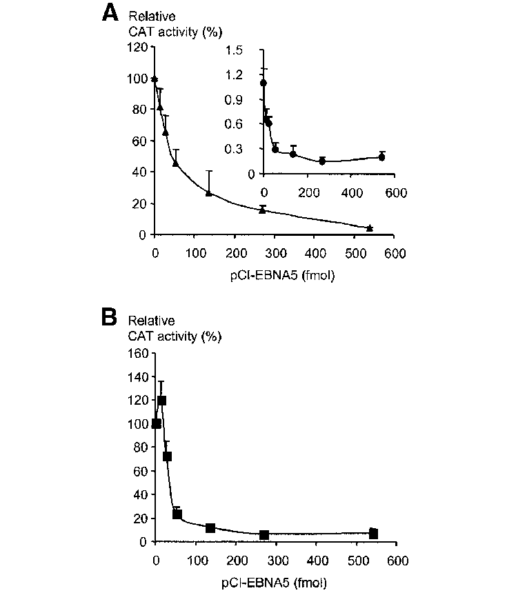 Pci vector expression. Effect of ebna on