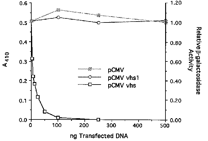 Pcmv vector bacterial expression. Cotransfection assay for vhs