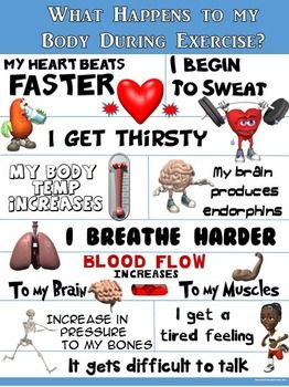 Pe clipart important. Best physical education