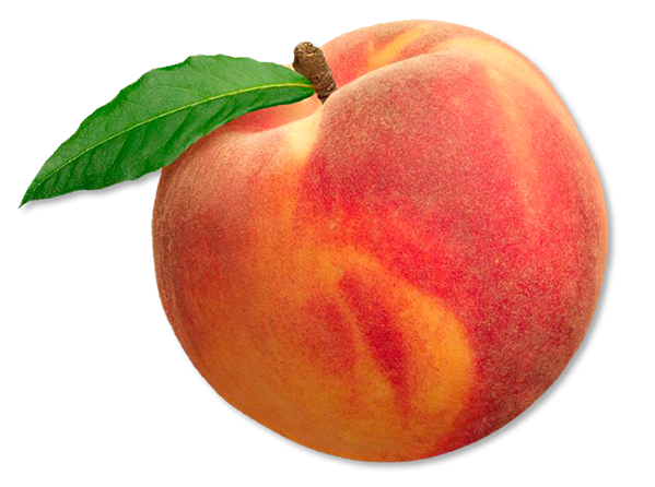 Peach png. Transparent images pluspng image