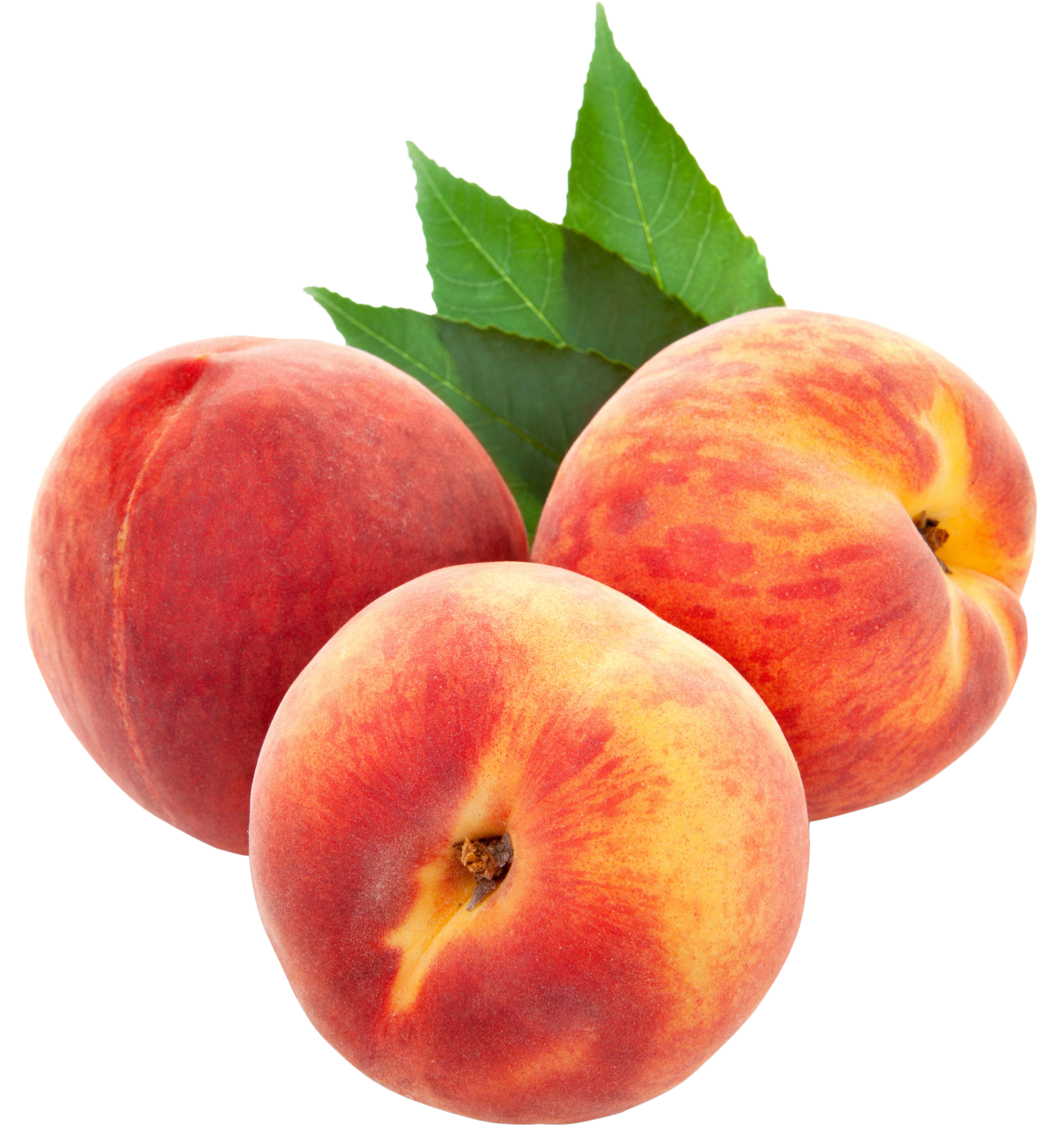Peaches transparent. Large png clipart gallery