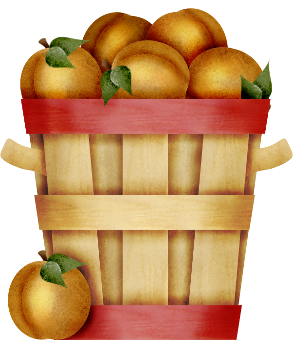 Peaches clipart basket peach. Grapes plums bananas other