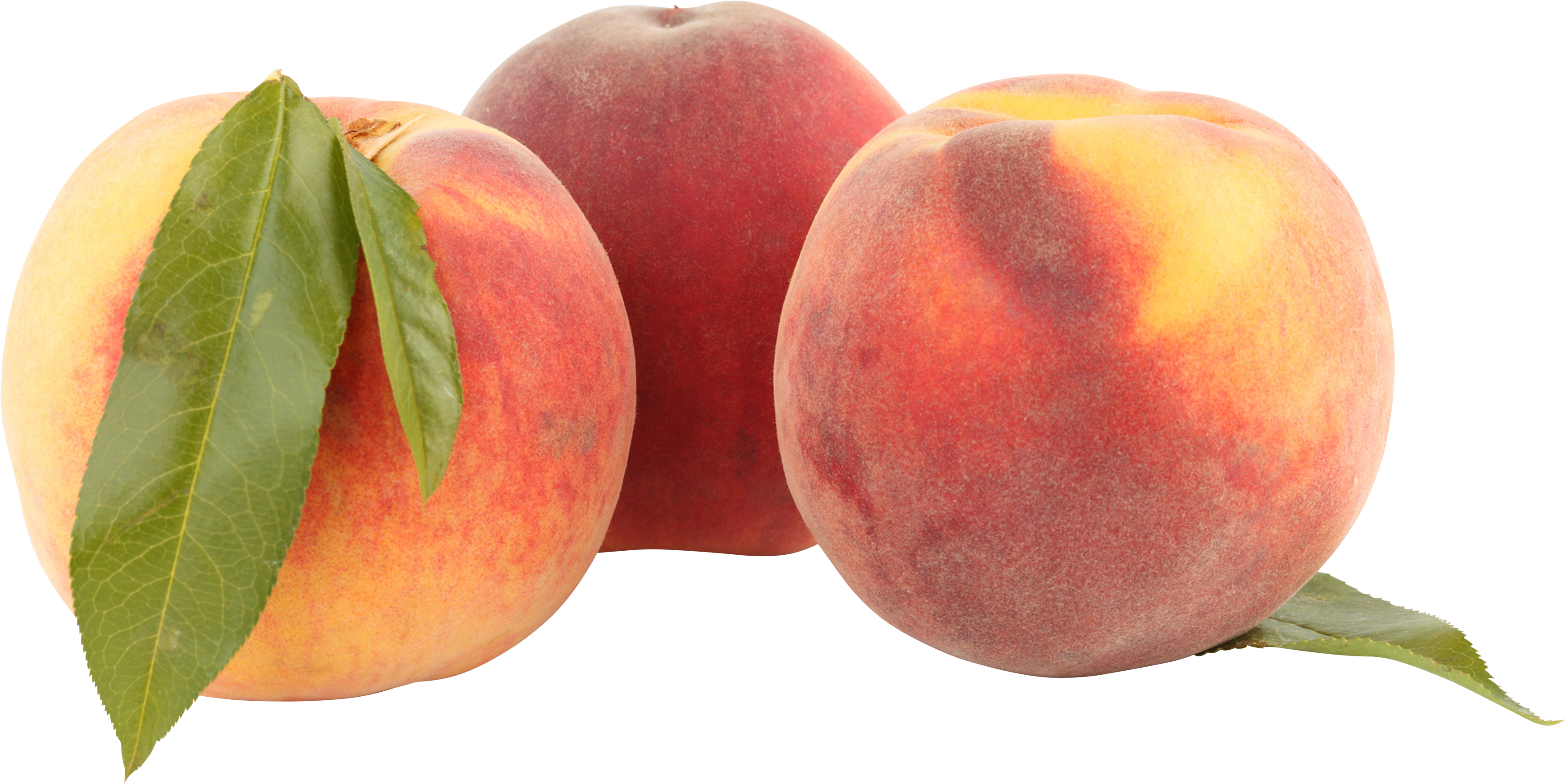 Peaches transparent. Png image purepng free