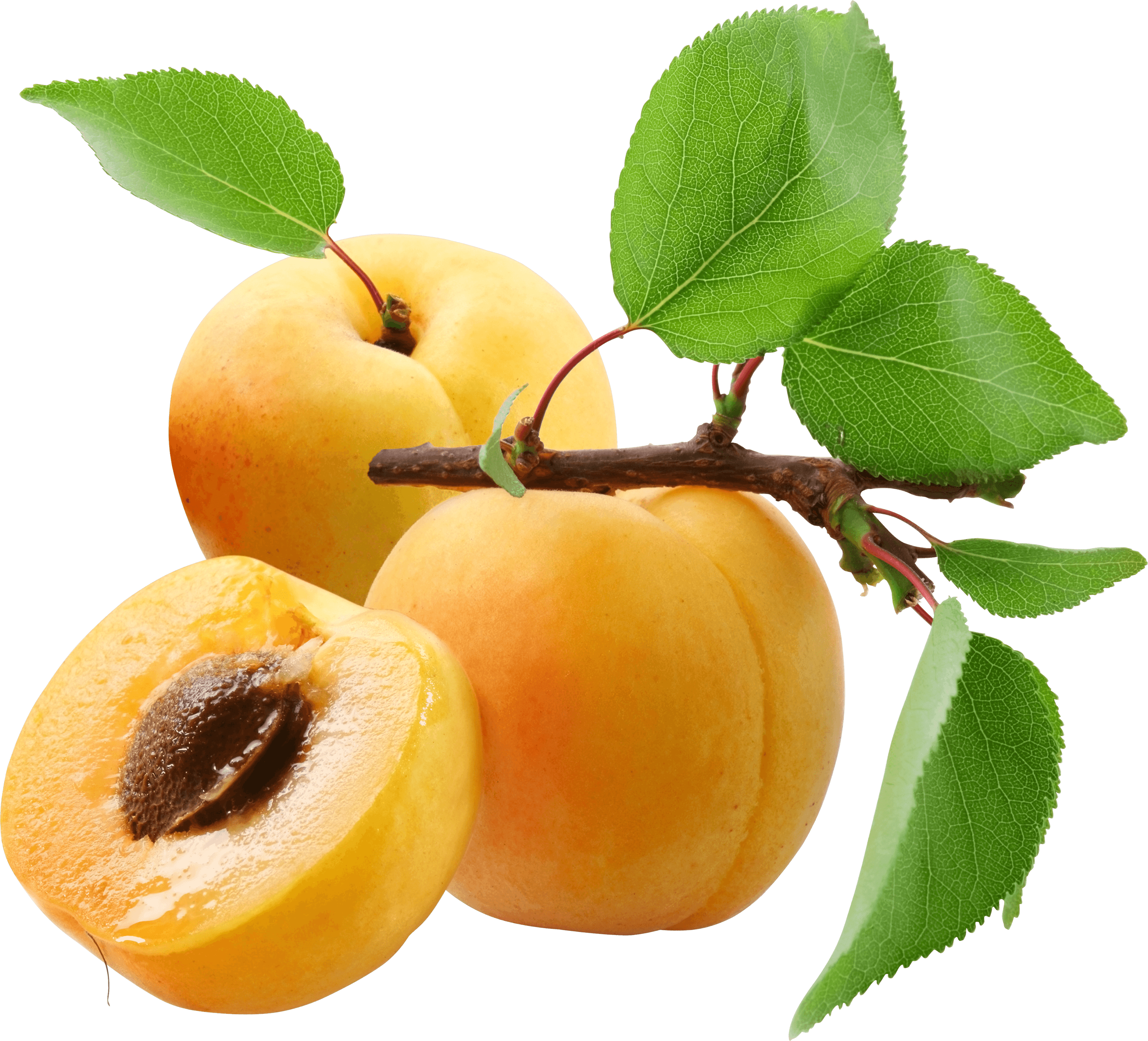 Peaches transparent. Three png stickpng food