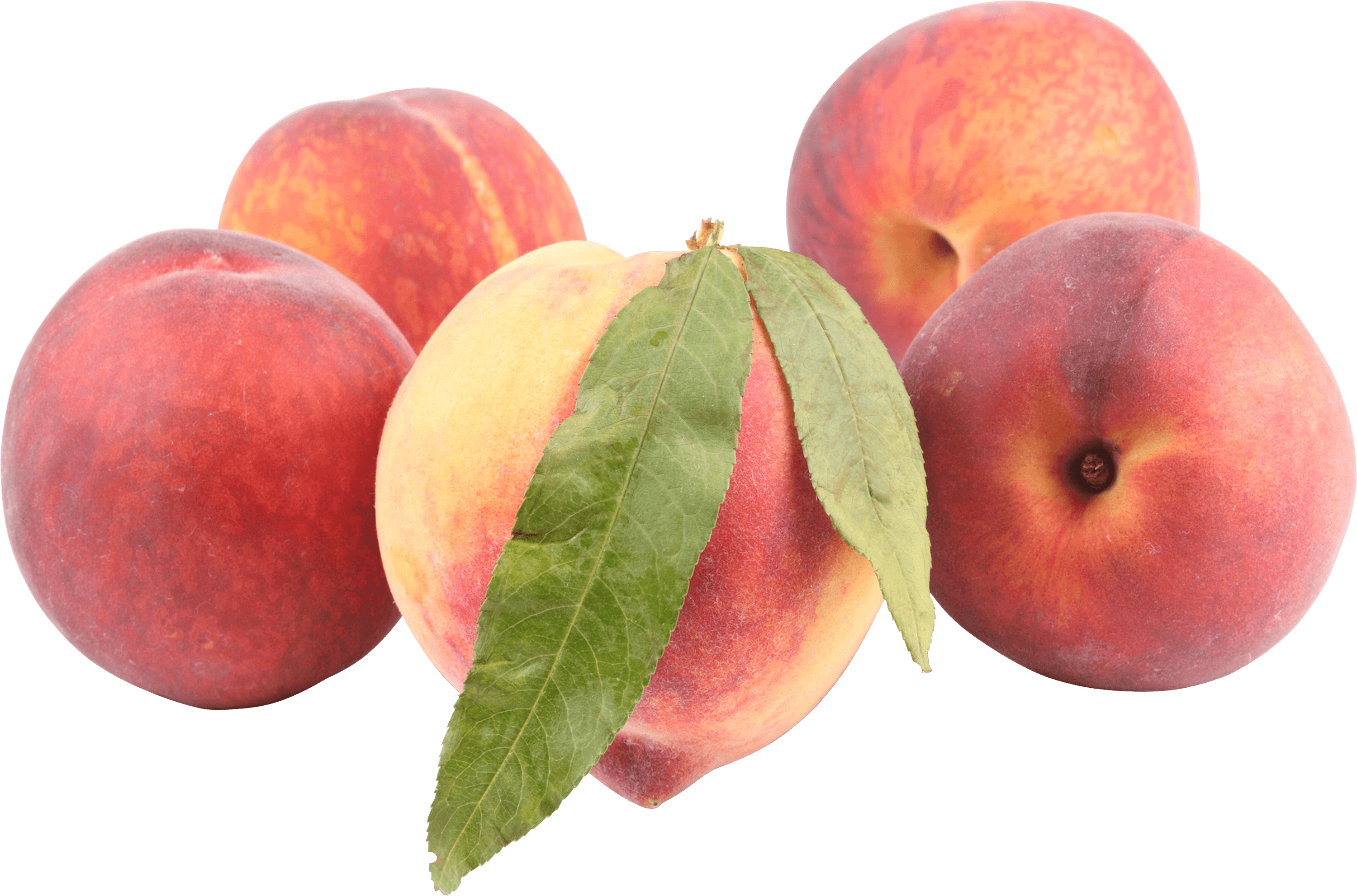 Peaches transparent. Png stickpng food fruits