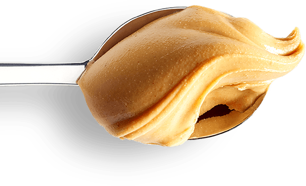 Peanut transparent white background. Butter lover s day