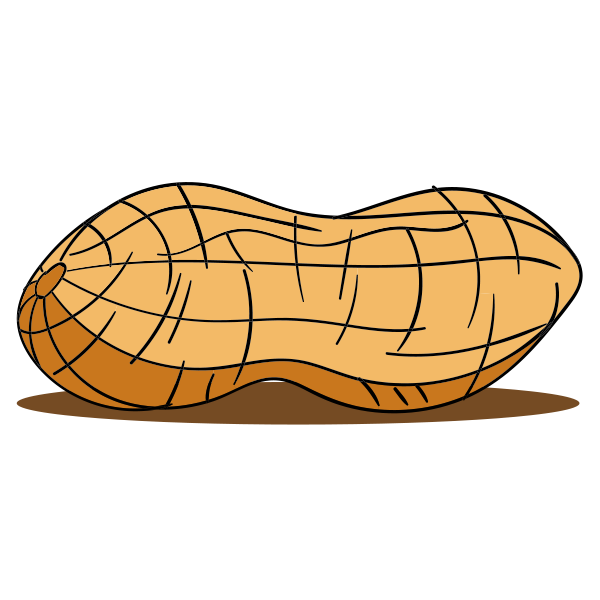 Peanut clipart single. Home peanuts are my