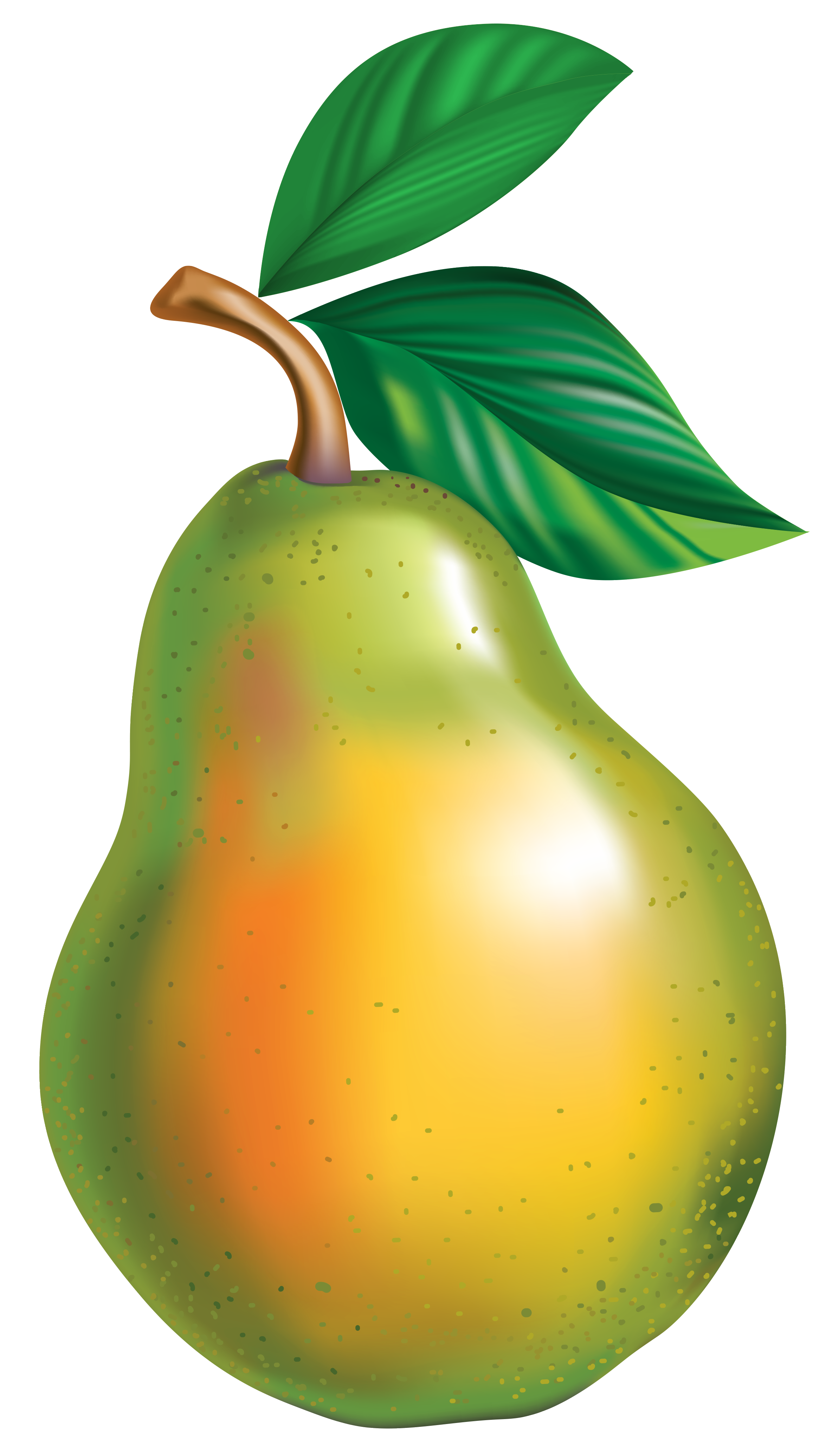 Pear clipart. Png picture gallery yopriceville