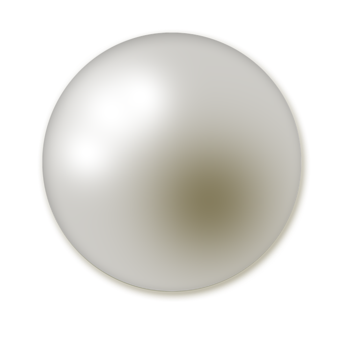 Clam vector pearl clipart. Png image purepng free
