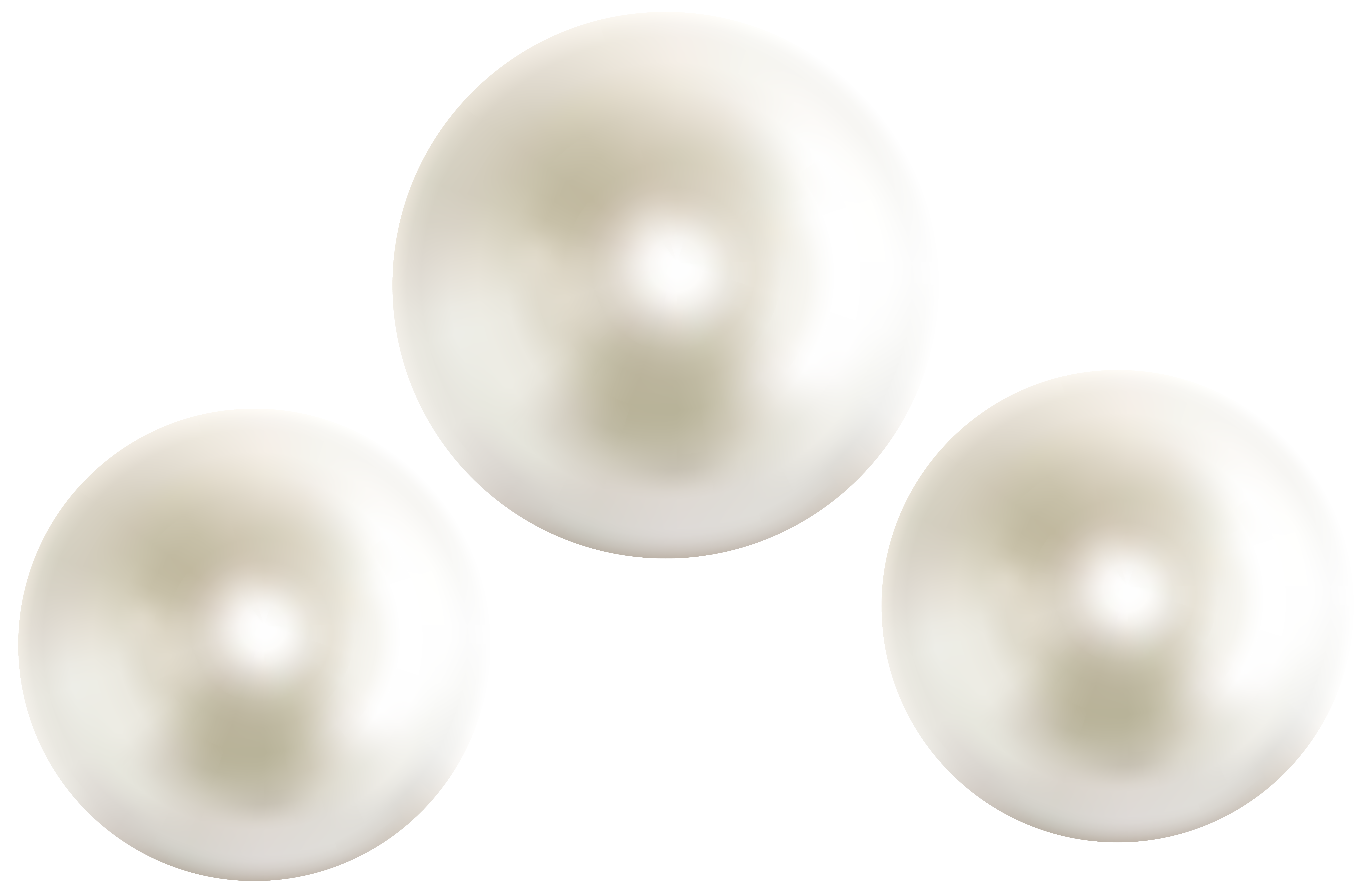 transparent pearls oyster png