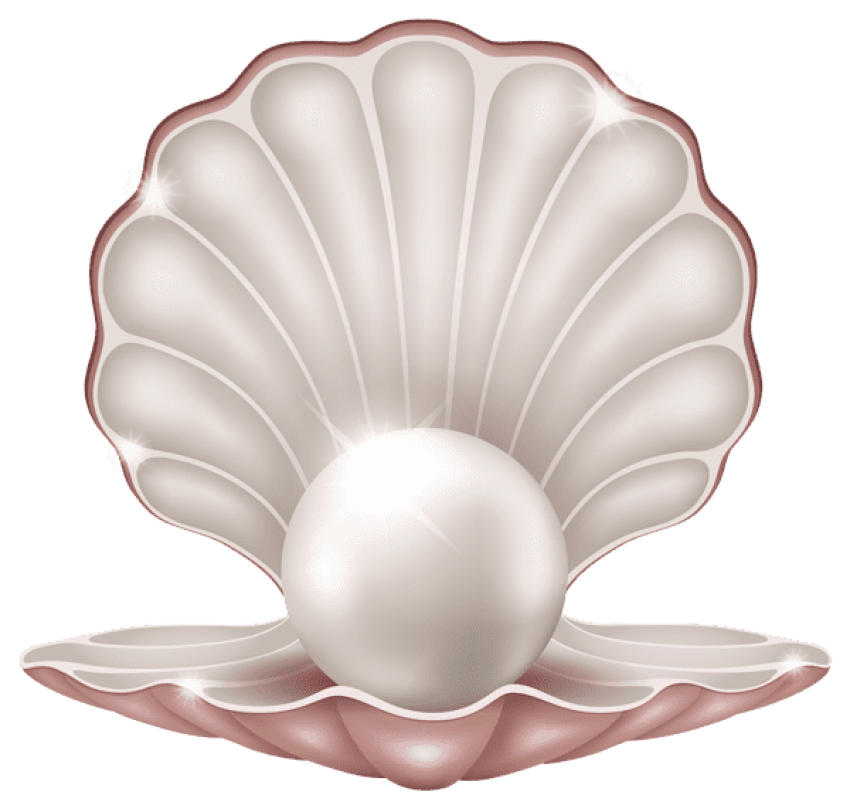 Beautiful clam with pearl. Pearls png transparent vector stock