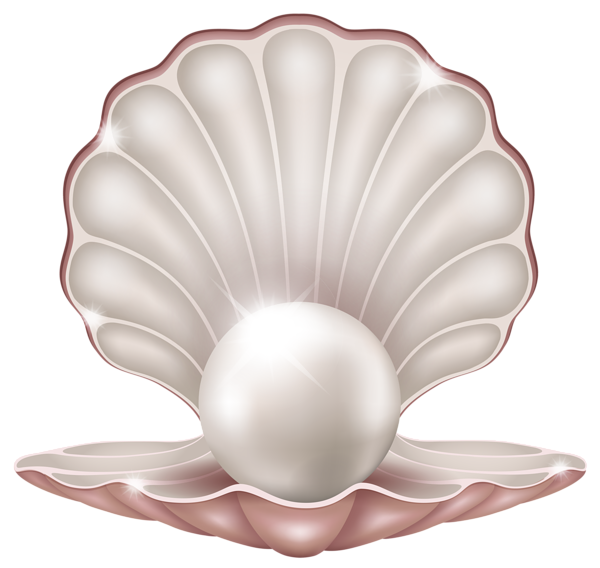 Pearl shell png. Beautiful clam with clipart