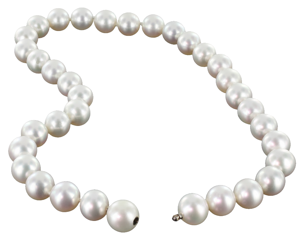 Pearl string png image. Transparent pearls graphic download