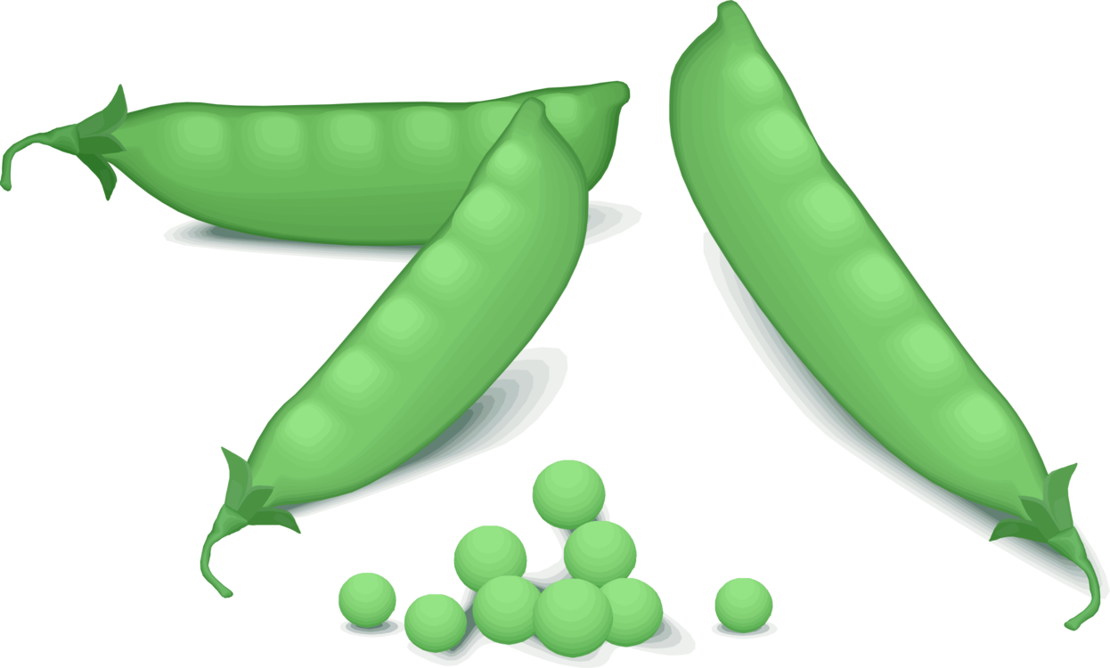 Vegetables clipart pea. Vegetable fruit computer icons