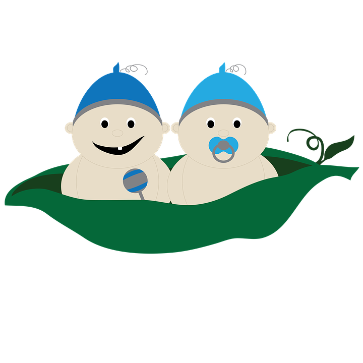 Peas drawing snow pea. Download free png twins