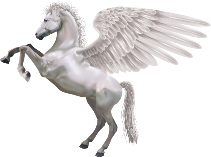 Pegasus transparent gray
