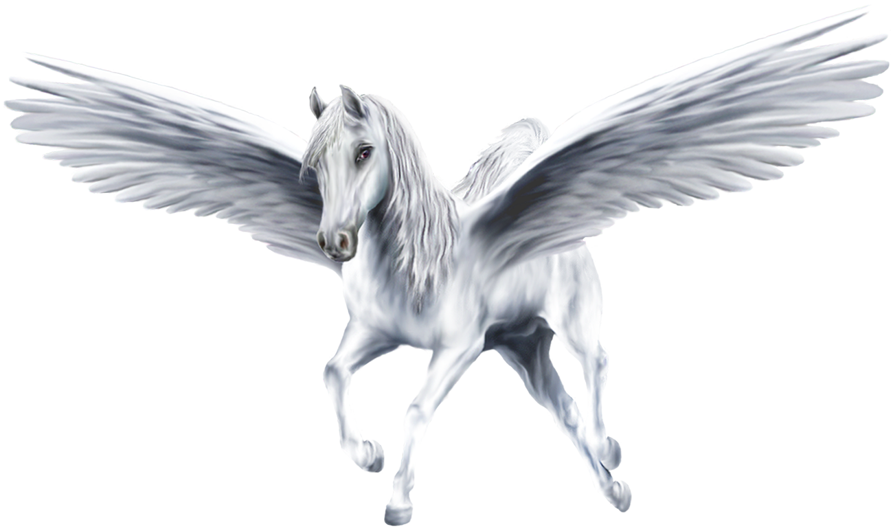 Pegasus transparent drawn