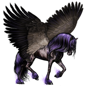 Pegasus transparent wallpaper. The new howrse images