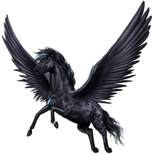 Pegasus transparent black. The new howrse images