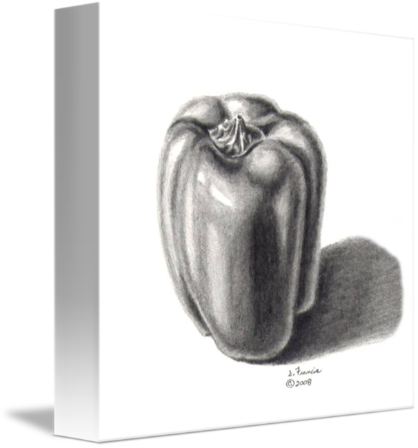 Pencils drawing still life. Plastic green pepper by