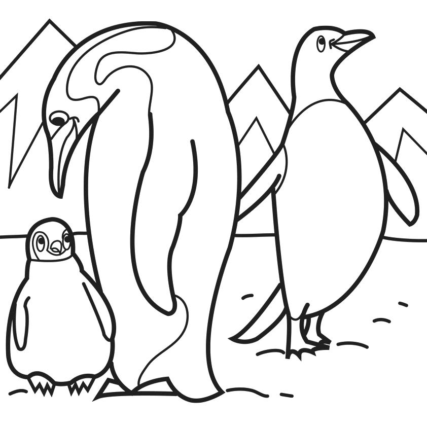 Penguin clip art coloring page. Foot pages feet free