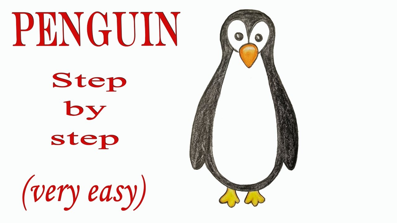 Penguin clip art easy. How to draw a