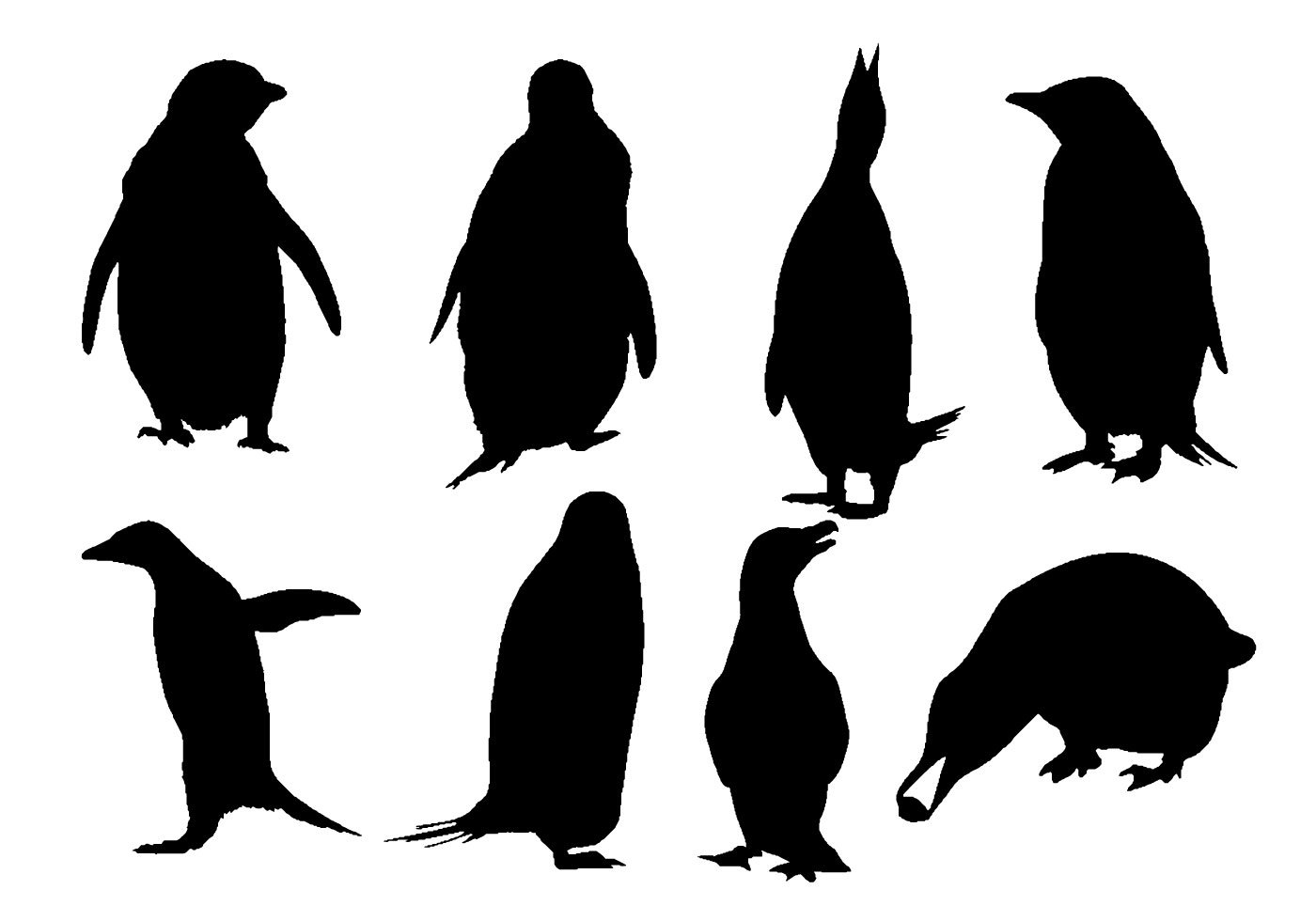 Penguin clip art silhouette. Chef free vector at
