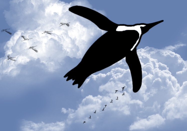 Penguin png flying. Penguins can fly the